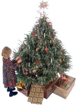 Christmaschi4